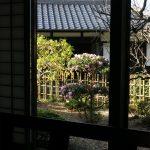 kanagawa_kamakura19