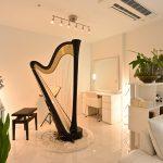housestudio harp