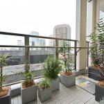 housestudio_ropponngi_verandaplants3